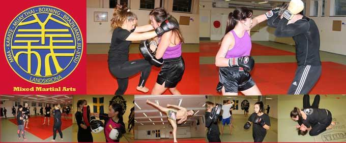 Mixed Martial Arts Landskrona